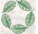 five_leaf.jpg