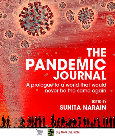 The Pandemic Journal